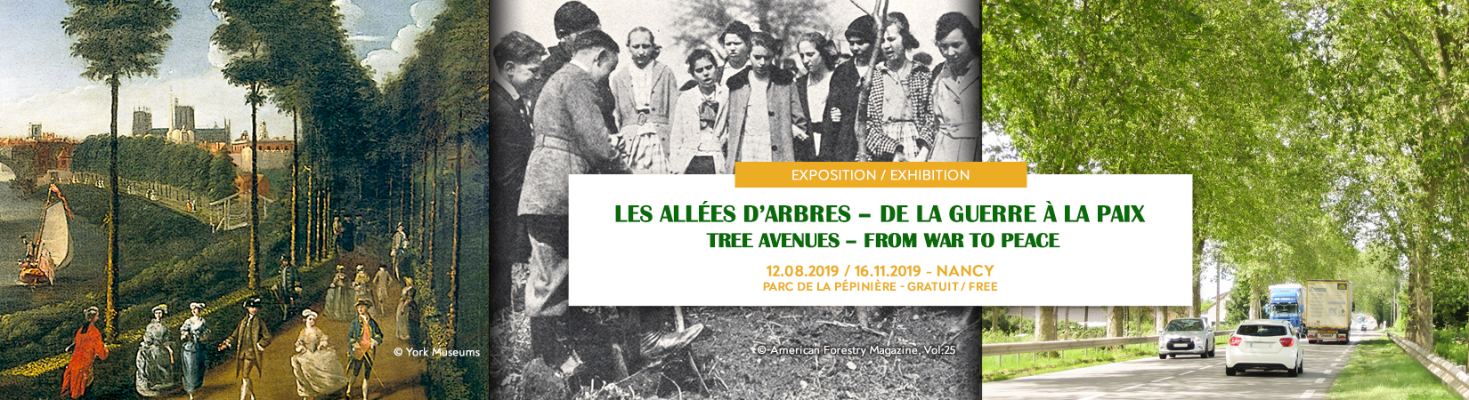 Allées_dArbres_-_bandeau_-_site_web_-_page_exposition_1